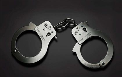 职务侵占罪共犯情节有哪些