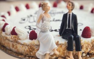 离婚撤诉申请