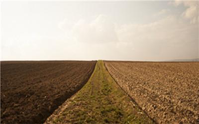 国有农用地实行承包经营的法律适用