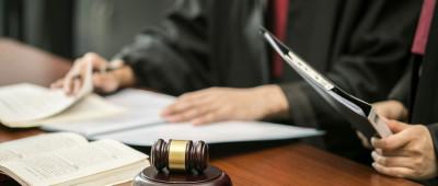 承担违法赔偿损失的构成要件是什么