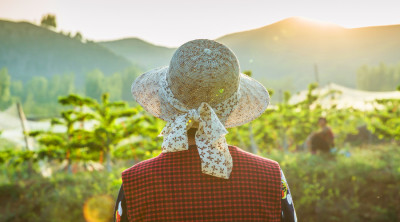 民法典关于土地经营权人的基本权利的规定