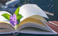 怎么认定文学作品是否侵犯他人名誉权