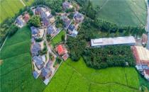 农村宅基地使用权是什么