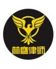 广西林鹰律师