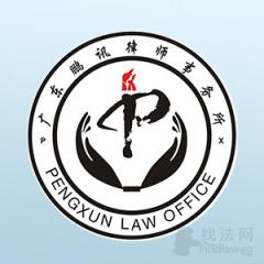 广东鹏讯律所律师团队