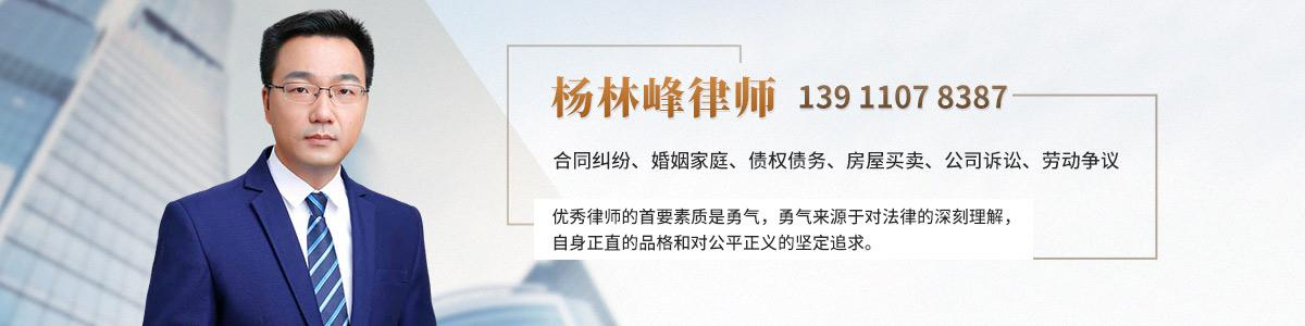大兴区杨林峰律师