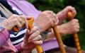 单位交的养老保险有什么用