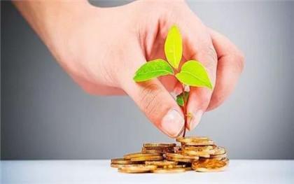小微企业融资需求的特点