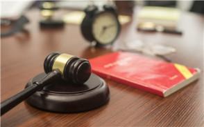 刑诉法中的申诉与再审是什么意思
