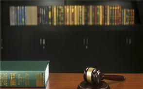 个人债务纠纷强制执行申请书范本