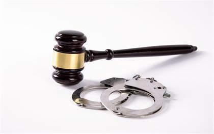 职务侵占罪法律后果