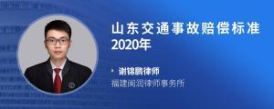 山东交通事故赔偿标准2020年