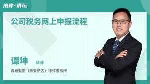 公司税务网上申报流程